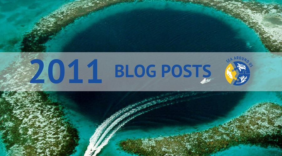 2011 blog posts