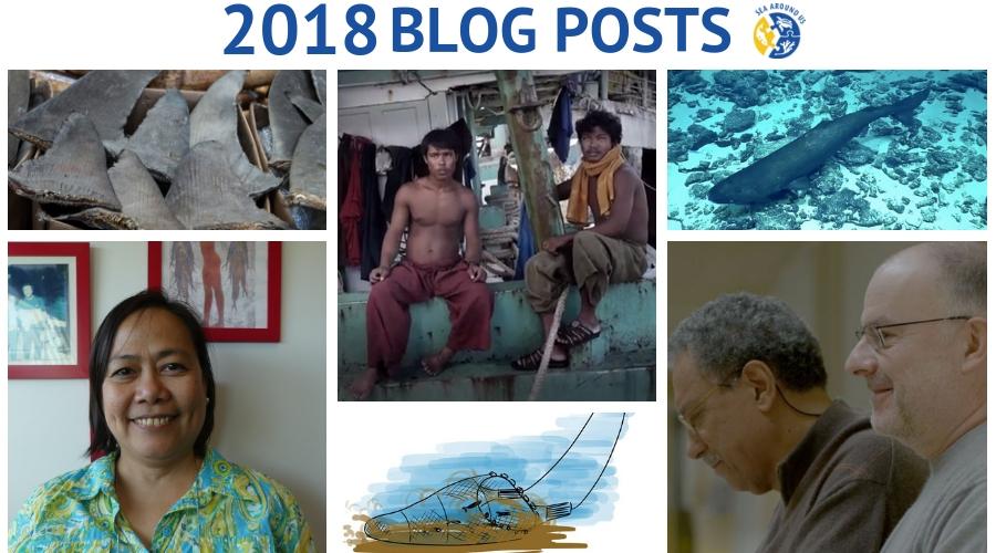 2018 blog posts