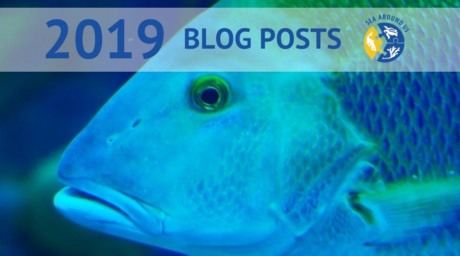 2019 Blog Posts Sea Around Us