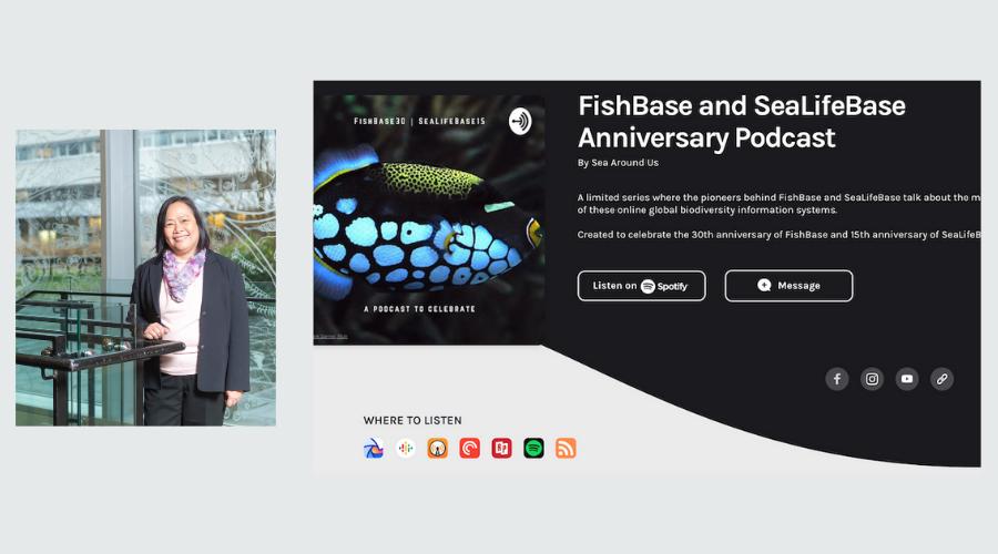 Deng Palomares reveals the origins of SeaLifeBase