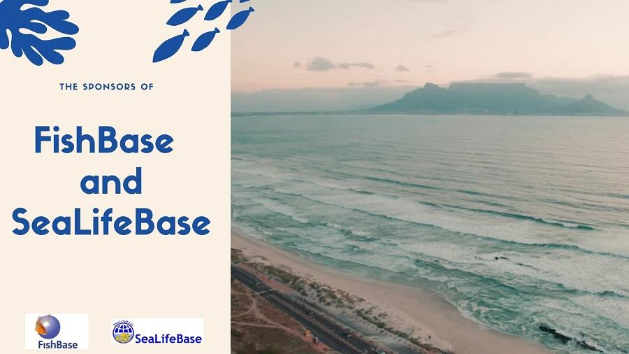 Who supports FishBase and SeaLifeBase?